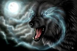 Wolf Design Fantasy Hd1600x1075 pixelPopular HD Wallpaper #3211 1202