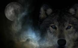 Wallpaper Abyss Explore the Collection Fantasy Animals Fantasy Wolf 832