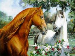 More horse wallpapers!Horses Wallpaper15705283FanpopPage 5 1889