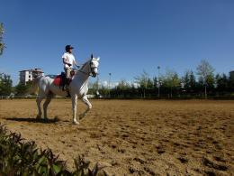 File:Girl riding horse 1040322 nevit jpg 1400