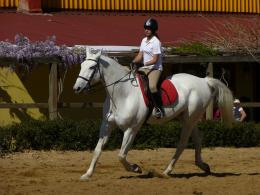 File:Girl riding horse 1030618 nevit jpg 1706