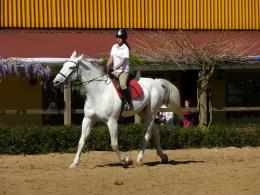 File:Girl riding horse 1030465 nevit jpg 1421