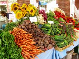 Locally Grown Food: To Be a $7 Billion Dollar Business | Cooperative 1619