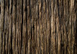 Wood Texture Wallpaper Collection for Android 1961