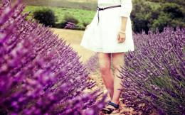 mood macro flowers lavender purple field girl legs dress hd wallpaper 1467