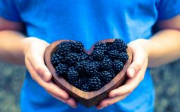 blackberries, bowl wooden, heart, girl, macro, photo, hd, wallpaper 108