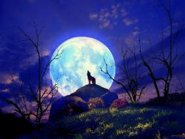 Wolf Howling Full Moon Japan Wallpaper Frenziacom 1600x1200px 415