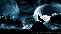Howling wolf space fog black mist quote blue HD Wallpaper 1723