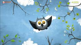 May Owl Flight Wallpapers HD Wallpapers 1831