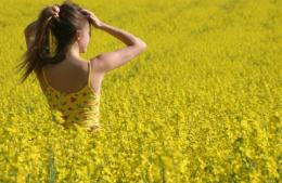 Anna in yellow field sunny day sunshine joy HD Wallpaper 280