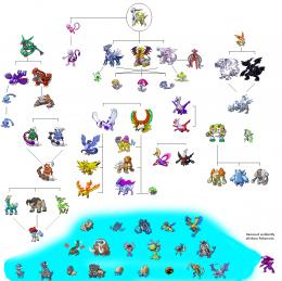 Pokemon Evolution Level Chart Pok Mon Wallpaper Hd | Best Cartoon 230