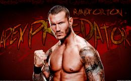 WWE Apex Predator Randy Orton HD Wallpapers 413
