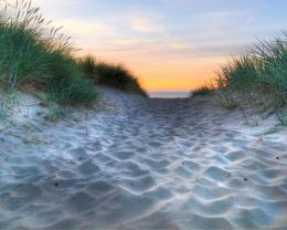 Sandy Walk Path To The Beach Hdr Hd Wallpaper | Wallpaper List 767