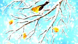 Winter Titmouse Bird Autumn Branch Fall hd wallpaper #1896822 1492