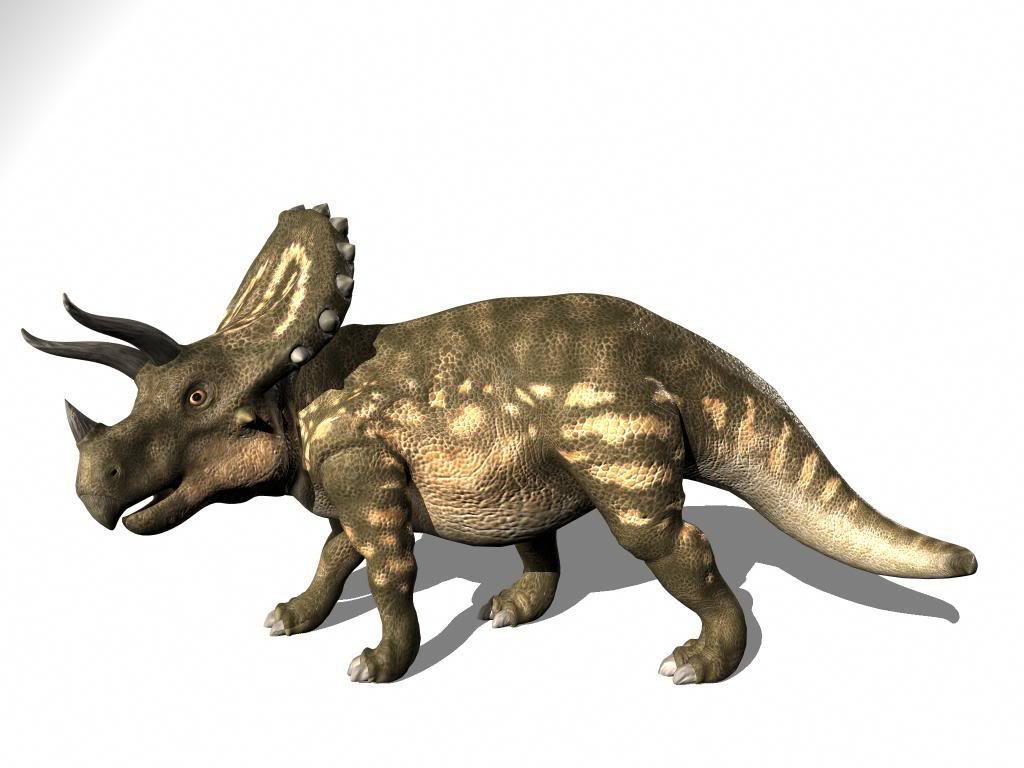 here is my other dinosaur model trexhttp:www cgtantra com forums 800