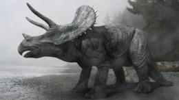 Triceratops WallpaperGood Galleries 1285