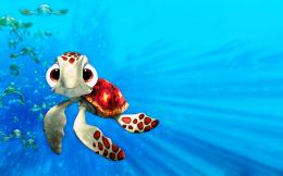 finding nemo turtle hd 1280x800 pixel 327 kb jpg 104