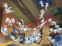 101 dalmatian wallpapers 309