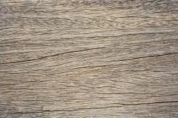Weathered Wood Texture 3 | Textures of New York 1376