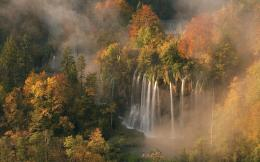autumn colors mist morning light of dawn forest wallpaper background 1079
