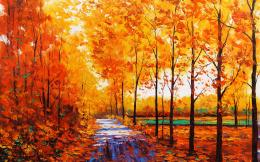 forest path sidewalk trail leaves autumn fall seasons color wallpaper 370