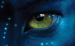 Avatar2009Yellow Blue Fantasy Eye Movie hd wallpaper #1701667 1365