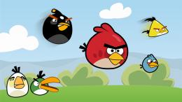 avengers, batman, hd, anime: 145 Wallpapers Angry Birds HD Backgrounds 298
