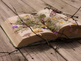 Beautiful Book Wallpaper Desktop Wallpaper | WallpaperLepi 1749