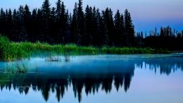 Reflection Lake Mount Rainier 1600 X 1200 225 Kb Jpeg | HD Wallpapers 1531