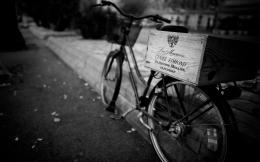 Bicycle bike black white macro wine wallpaper | 1920x1200 | 52978 1762