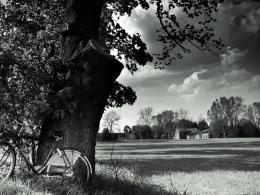 Bicycle in the country in black white wallpaper 722
