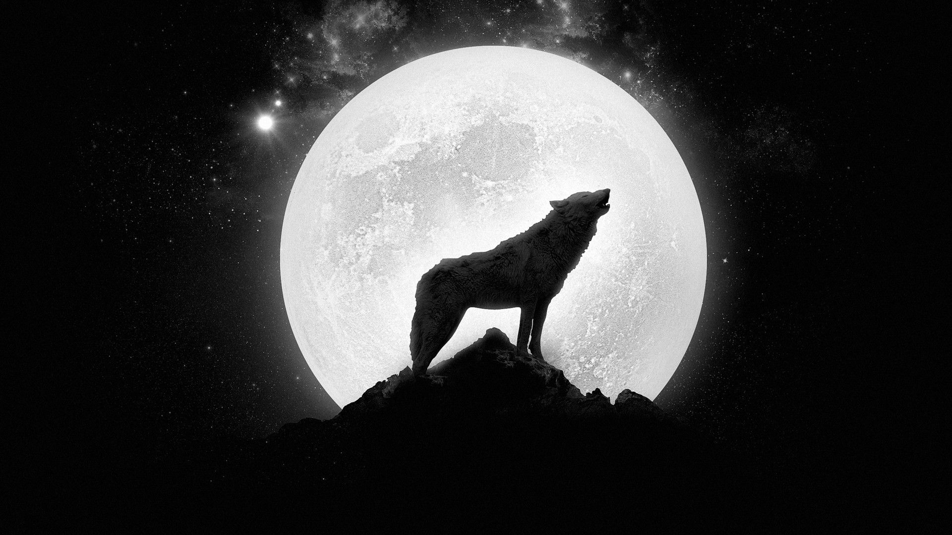 Wolf howling at the full moon wallpaper1206348 1740