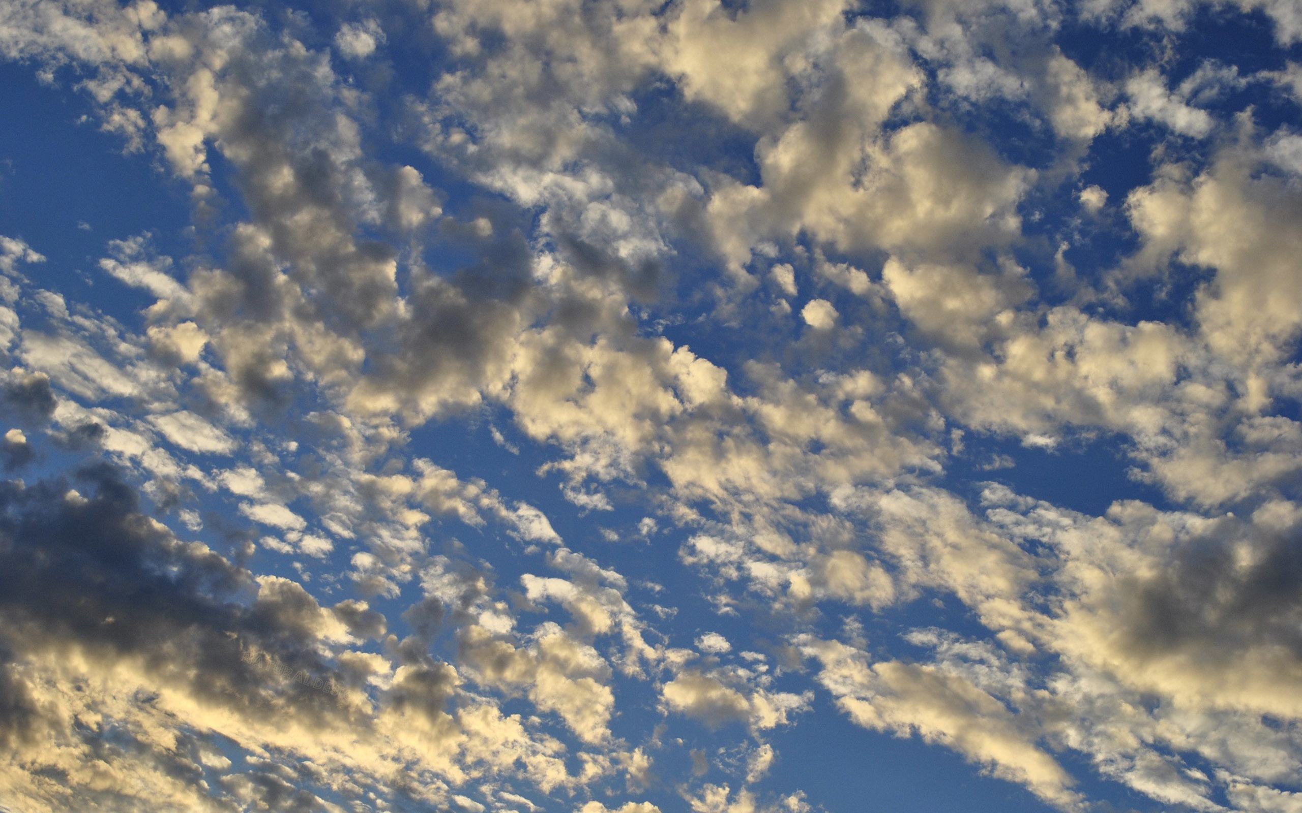 White clouds in the blue sky Wallpaper #41162 778