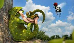Gecko Vs Fly Hd Wallpaper | Wallpaper List 262