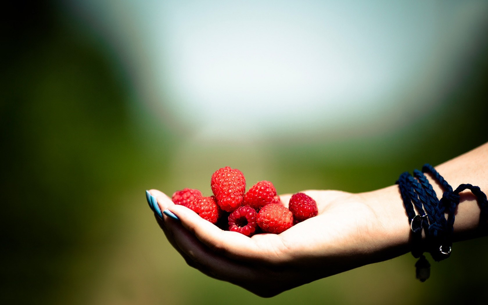 mood, macro, focus, photography, hand, raspberries, desktop hd, girl 1403