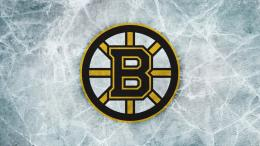 Download Boston Bruins Logo wallpaper in Other wallpapers with all 1016