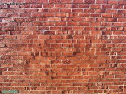 Brick Wall With A TwistDevelopment 1085