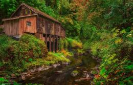 Download wallpaper Cedar Creek Grist Mill, Woodland, Washington 1770