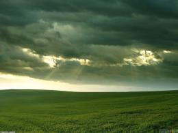 Green field, cloudy day wallpaper #119Open Walls 288