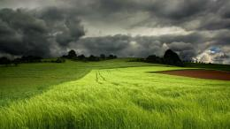 green fields cloudy sky Wallpaper, Desktop Wallpapers, Free Wallpapers 1281