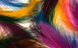 Feather colorful wallpaper WallpapersHD Wallpapers 85539 1708
