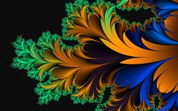 Colorful fractal feather Wallpaper #34870 831