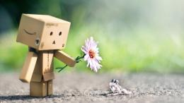 Danbo, Flower, And Frog HD dekstop wallpapersDanbo, Flower, And 1175