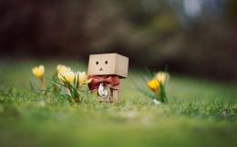 Danbo Toy HD Wallpaper | 3D & Abstract Wallpapers 1270