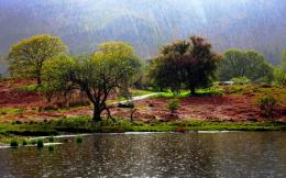 Download Rain at riverside wallpaper in Nature wallpapers with all 730