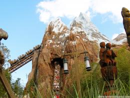 Animal Kingdom : Disney World Resort | Disney World Vacation | Resorts 142
