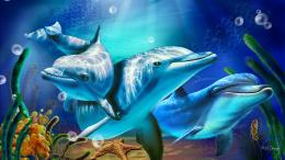 Colorful Dolphin Backgrounds | wallpaper, wallpaper hd, background 1415