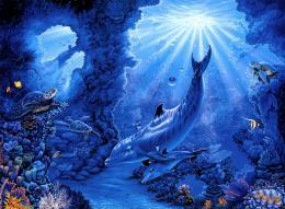 fish corals rays art dolphins dolphin sea ocean underwater wallpaper 1950