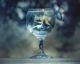 Trapped Beauty Butterfly Glass Fantasy Girl hd wallpaper #1572069 383
