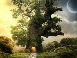 Fantasy Tree House Hd Wallpaper | Wallpaper List 1399